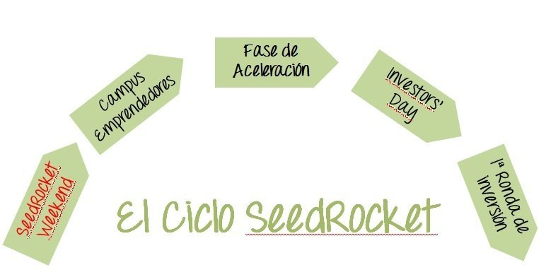 Ciclo SeedRocket