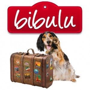 Bibulu