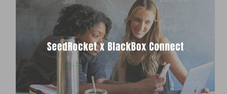 SeedRockers en Blackbox Connect